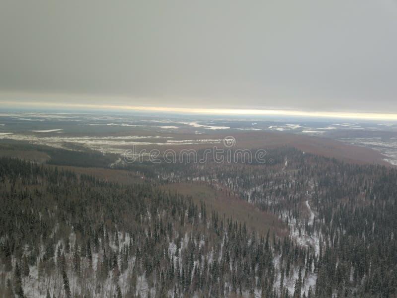 Região selvagem do inverno de Fairbanks Alaska fotos de stock royalty free