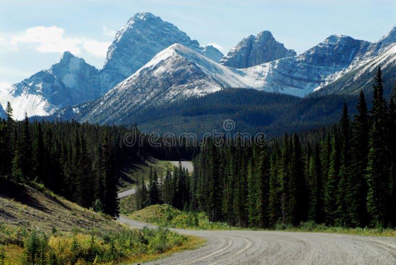 Região selvagem do parque nacional de Canadá Banff, viagem por estrada cênico fotografia de stock royalty free