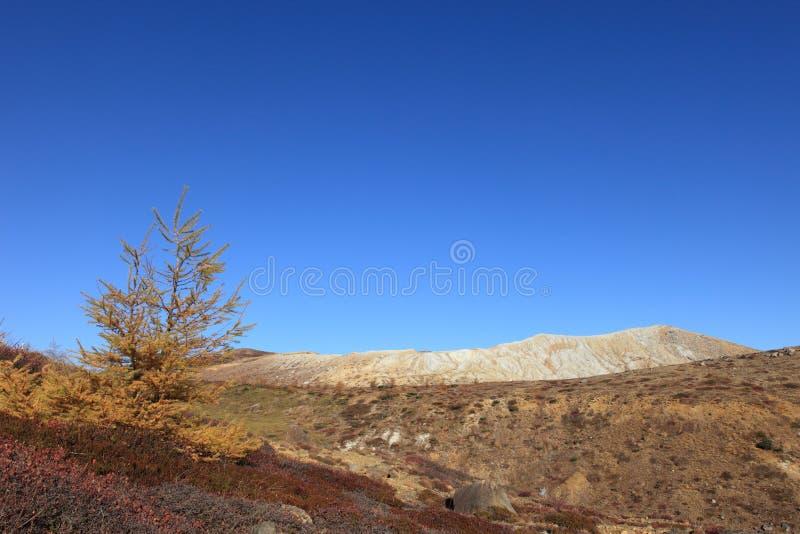 A região selvagem e o vulcão fotografia de stock