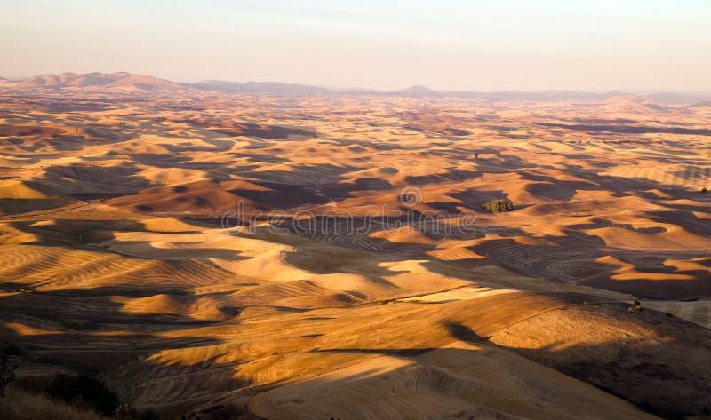 Región Washington Farmland Rolling Hills Agriculture del este de Palouse imagenes de archivo