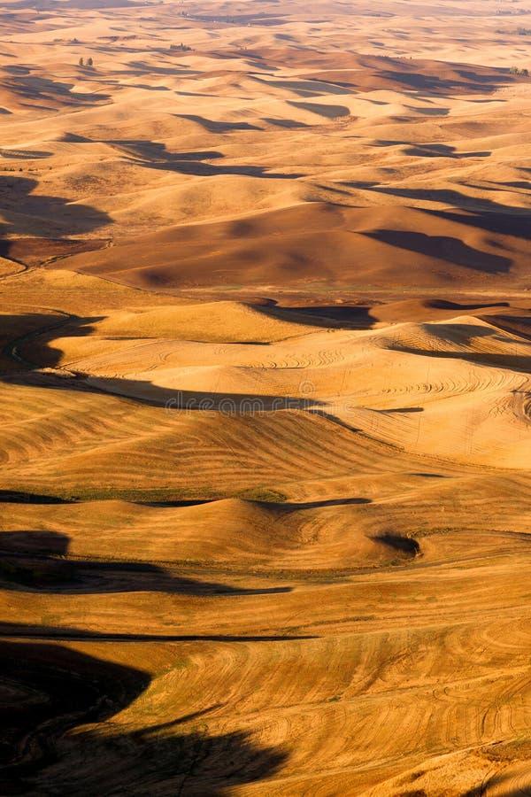 Región Washington State Farmland del este de Rolling Hills Palouse imagen de archivo