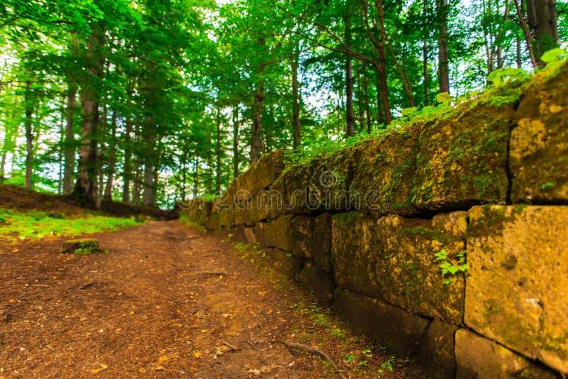 Regia de Sarmisegetusa, ruínas velhas em Transilvania, montanhas de Orastie, Romênia imagem de stock