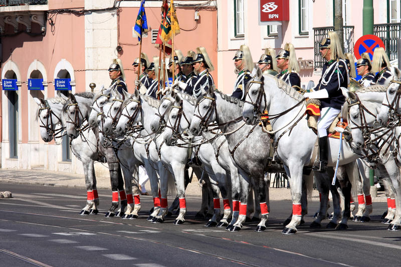 regiment för kavallerihästlisbon lusitano royaltyfri foto