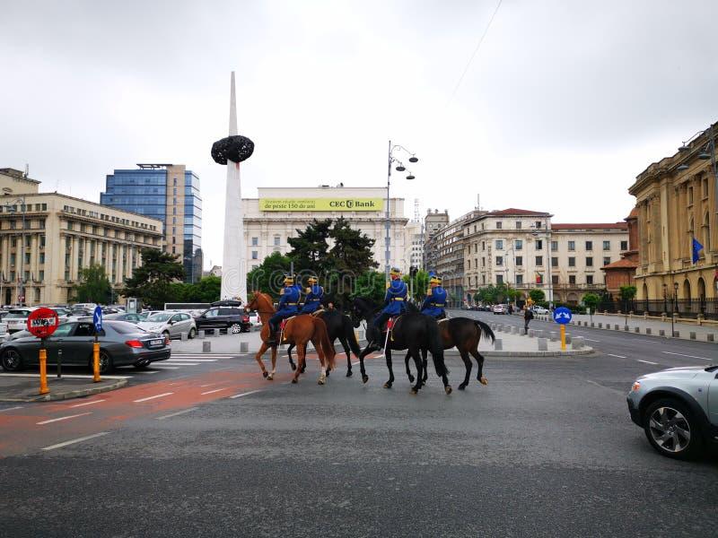 Regimento militar Mihai Viteazul do guar d do protetor a cavalo - 30o imagens de stock royalty free