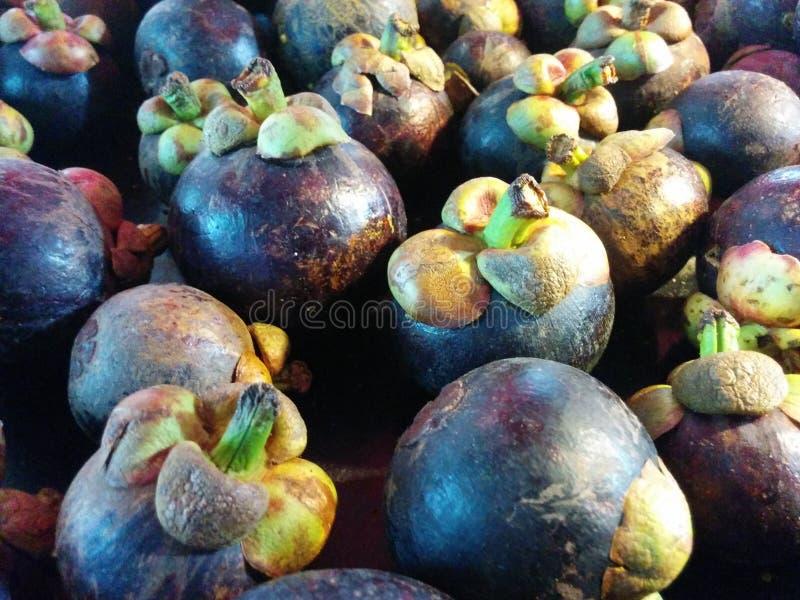Regina dei frutti; Mangostano fresco al mercato tailandese fotografia stock libera da diritti