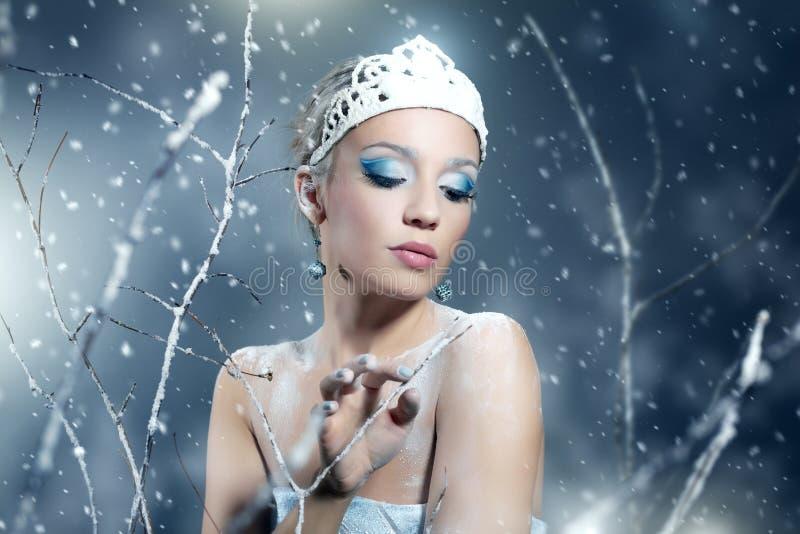 Regina di inverno immagini stock libere da diritti