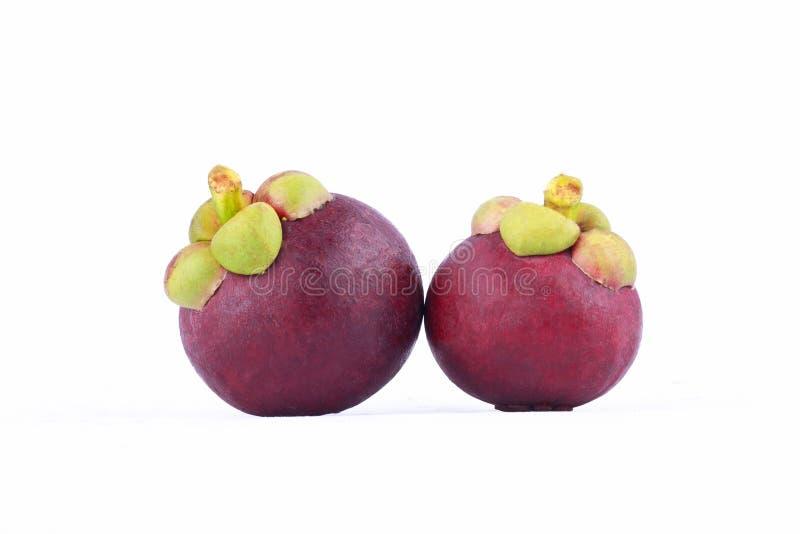 Regina porpora del mangostano del garcinia mangostana Linn di frutti sull'alimento sano della frutta del mangostano del fondo bia fotografie stock