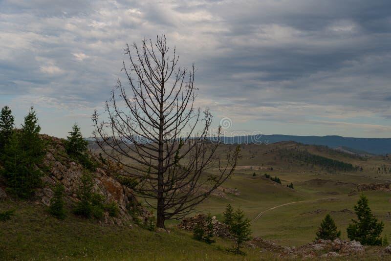 Region Baikal Direkte Straße auf der Steppe von Tazheranskaya in der Nähe der Steinfelsen, genannt das Tal der Stone Spirits lizenzfreies stockfoto
