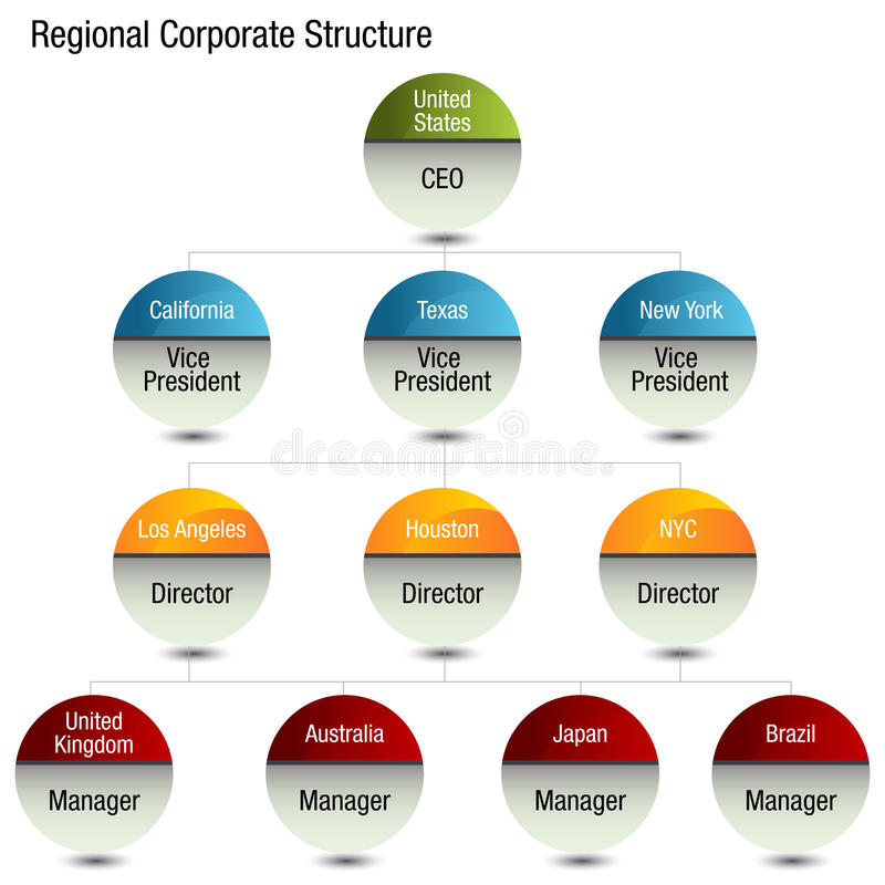 Free Regional Org Chart Royalty Free Stock Images - 47821409