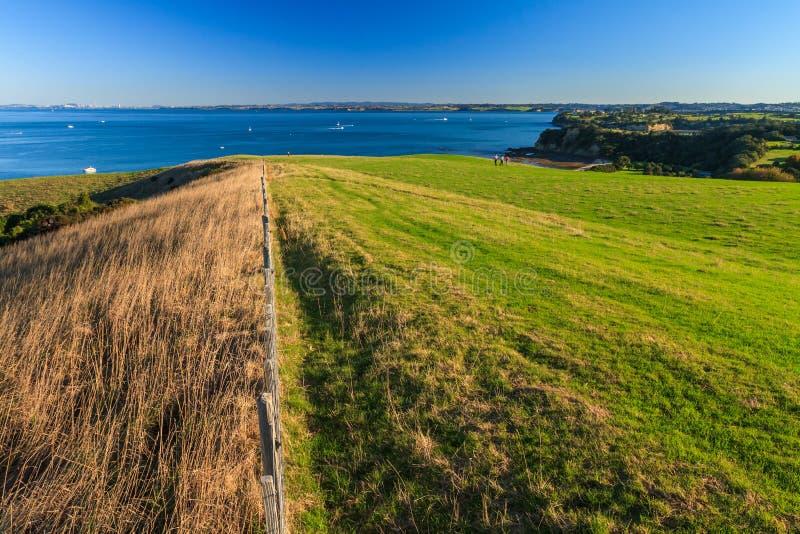 Regionala Shakespear parkerar, den Auckland regionen, Nya Zeeland arkivfoton