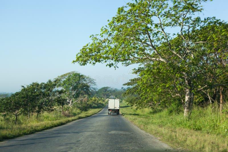 Regionale weg in Cuba met groene rond bomen royalty-vrije stock foto's