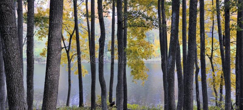 Regionaler Park Asveja lizenzfreie stockfotografie