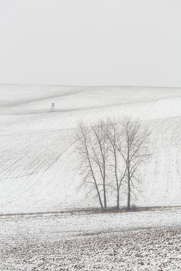 Regione di Turiec, Slovacchia immagini stock
