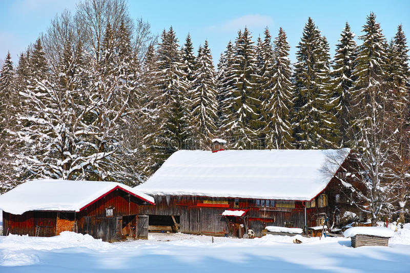 Regione montana alpina dell'azienda agricola nell'inverno immagine stock libera da diritti