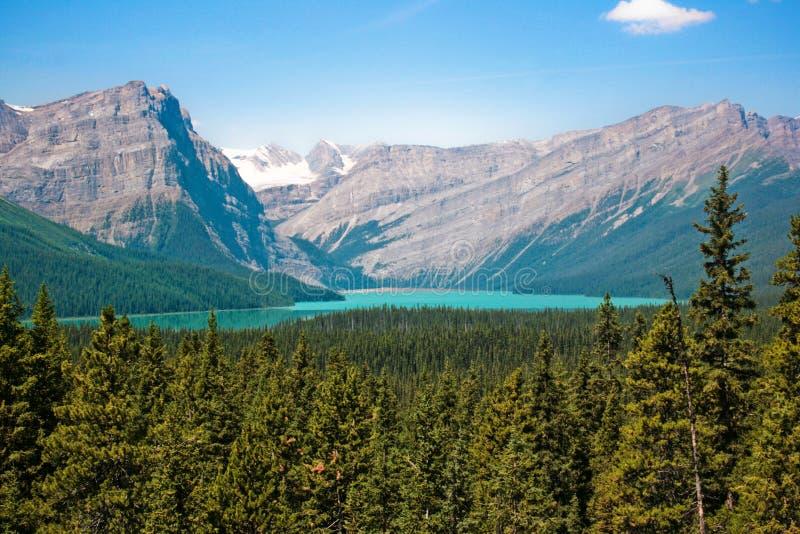 Regione selvaggia canadese nella sosta nazionale del Banff, Canada fotografia stock