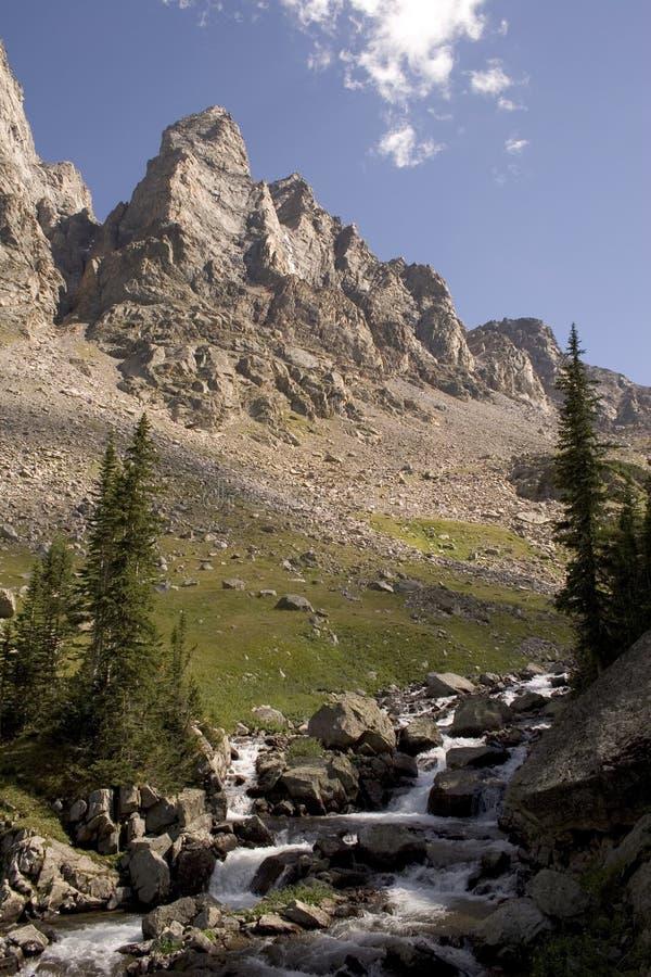 Regione selvaggia del Montana fotografia stock