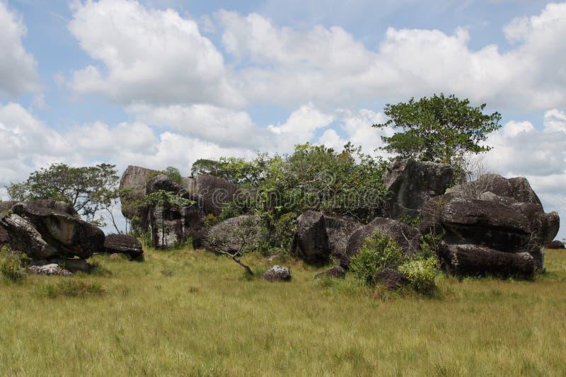 Regiones del este de Colombia fotografía de archivo