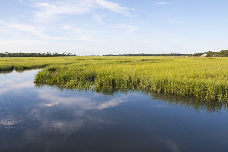 Regiones pantanosas de la sal de Carolina del Sur foto de archivo libre de regalías