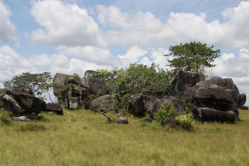 Regioni orientali di Colombia fotografia stock