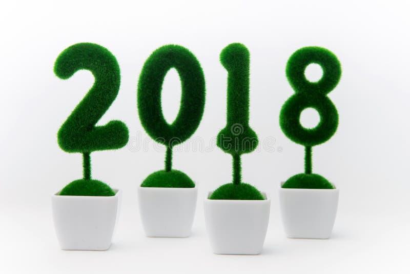 Registi 2018, il numero 2018 composto dalla pianta del cespuglio in vaso su fondo bianco fotografia stock