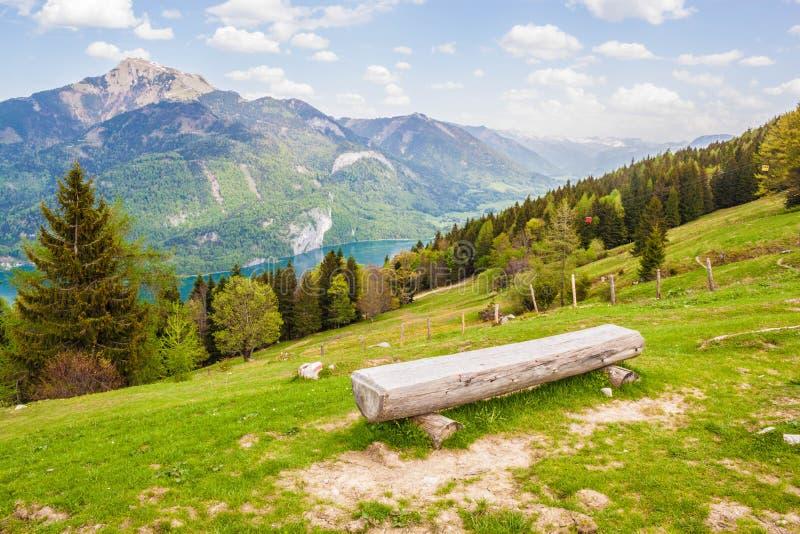 Registre el banco en una cuesta de una montaña con una hermosa vista del alpi fotografía de archivo libre de regalías