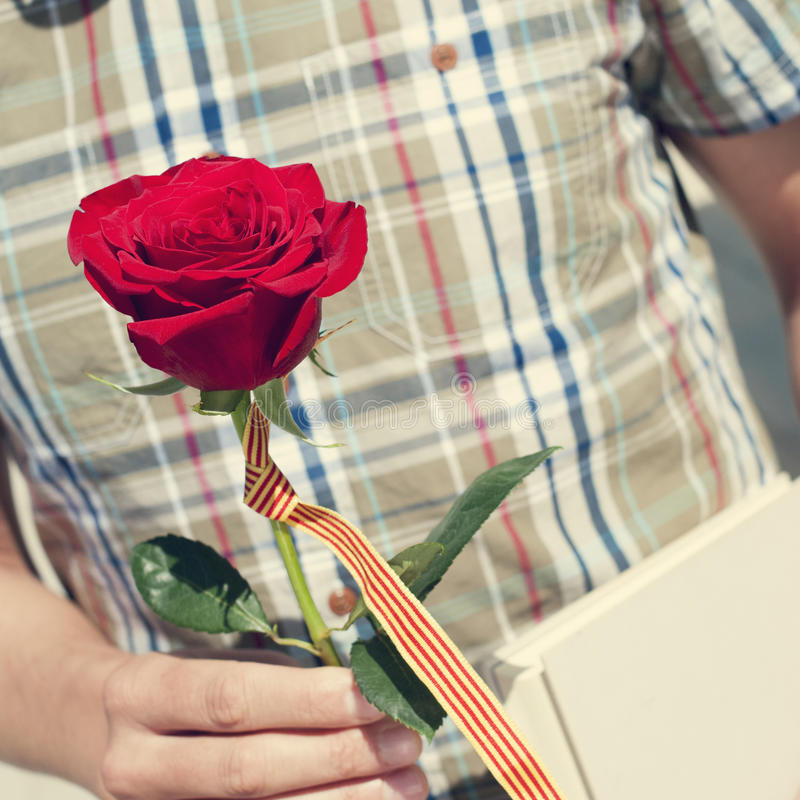 Registre, rosa do vermelho e a bandeira catalan para Sant Jordi, St George foto de stock royalty free