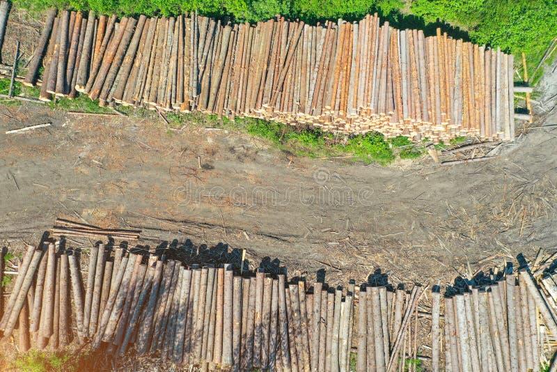 Registreren, blokhuisboomstammen van naaldbomen, hoogste satellietbeeld royalty-vrije stock fotografie