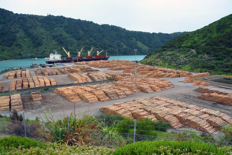 Registro del pino que exporta en Picton, Nueva Zelanda imagenes de archivo
