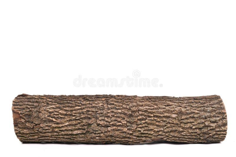 Registro isolado do topo com textura de madeira imagem de stock royalty free