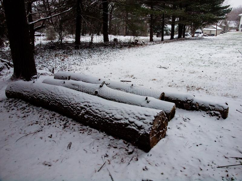 Registros cubiertos con nieve a partir de la primera tormenta imagen de archivo