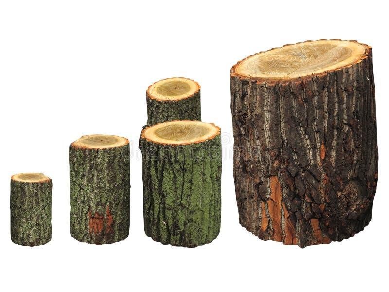 Registros de madeira do vidoeiro isolados no branco imagens de stock royalty free