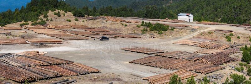 Registros de madera del bosque de pino en el bosque y una casa blanca distante Montañas de apertura de sesión de Pindus imagen de archivo