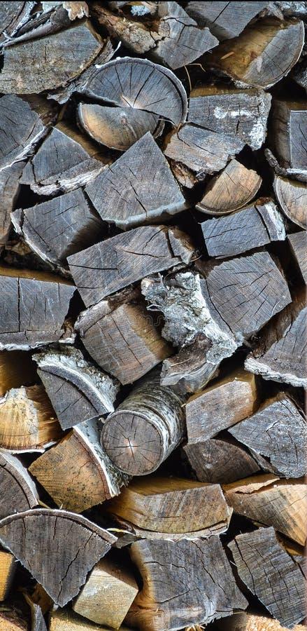 Registros del abedul para la chimenea Manera ecológica de calentar la casa con madera seca imágenes de archivo libres de regalías
