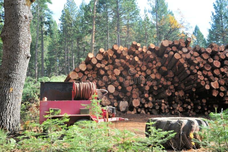 Download Registros Listos Para El Milll Imagen de archivo - Imagen de lumber, travieso: 7280701