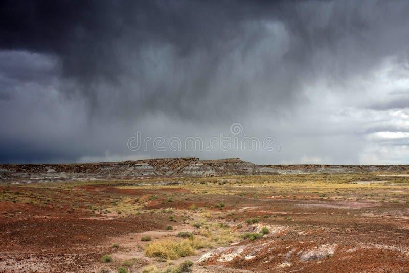 Regn över den målade öknen i Arizona royaltyfri foto