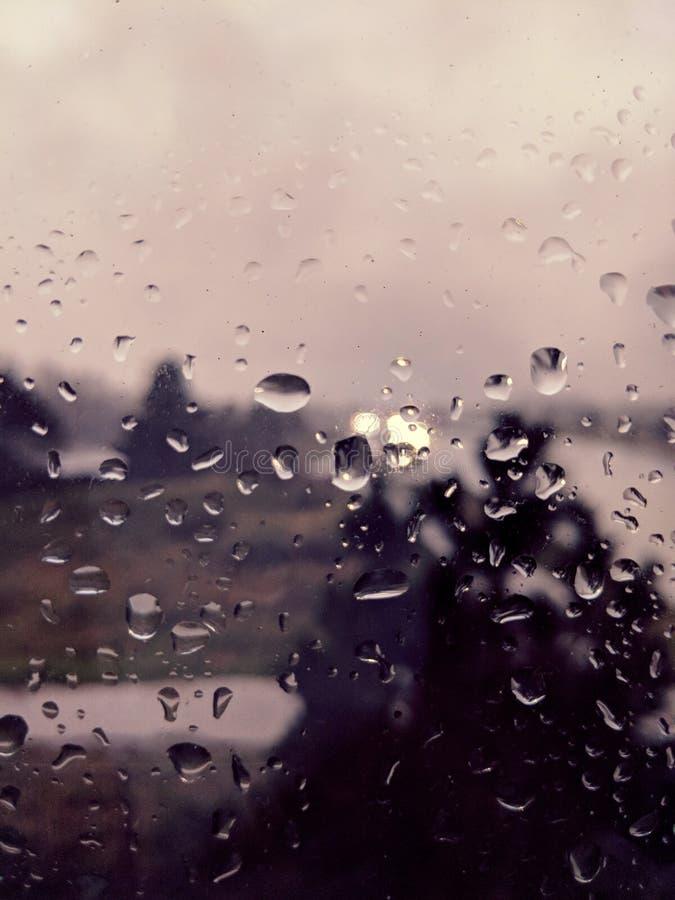 regn royaltyfri foto
