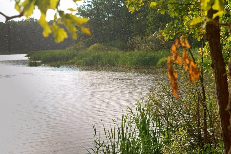 Regn och sol på en sommardag, regndroppar på sjön royaltyfri fotografi