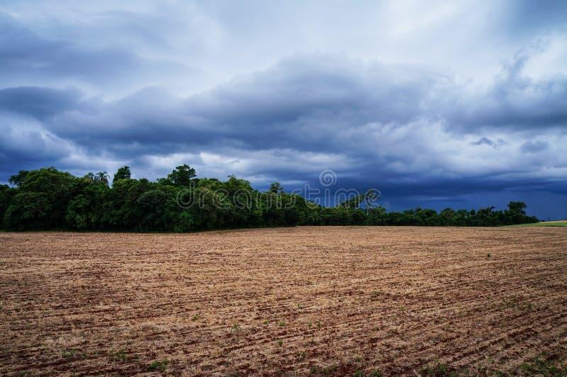 Regn som kommer i fälten 2 arkivbild