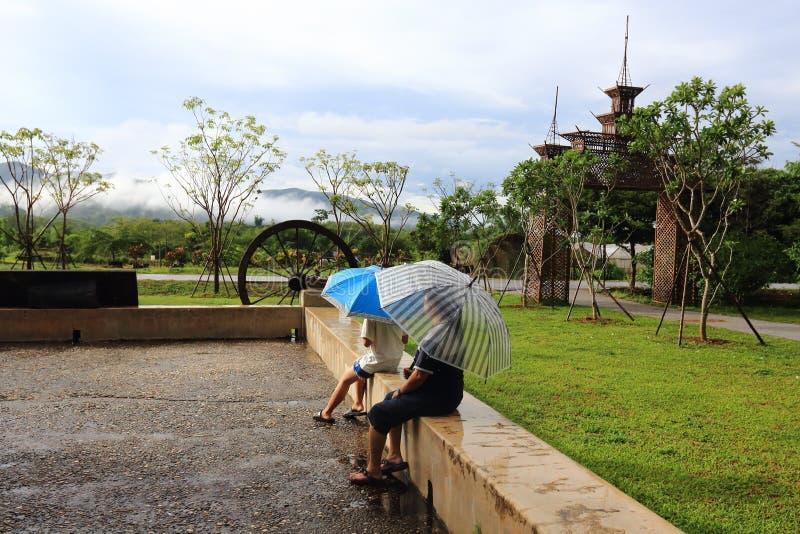 Regna och paraplyet royaltyfria foton