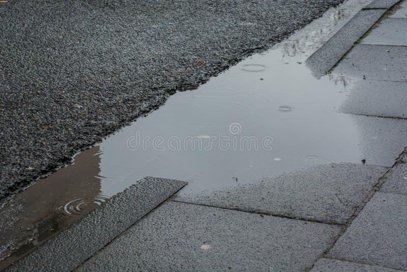 Regna pöl, vattendroppander och grå trottoar arkivbilder
