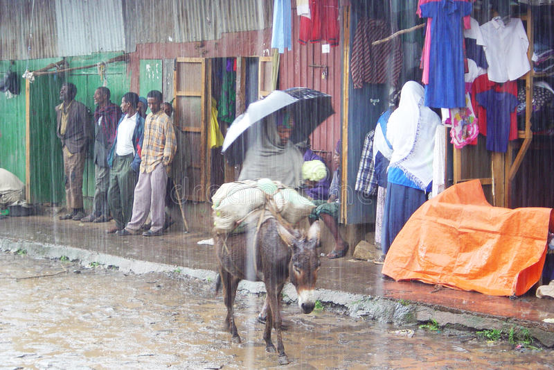 Regna säsong royaltyfri bild
