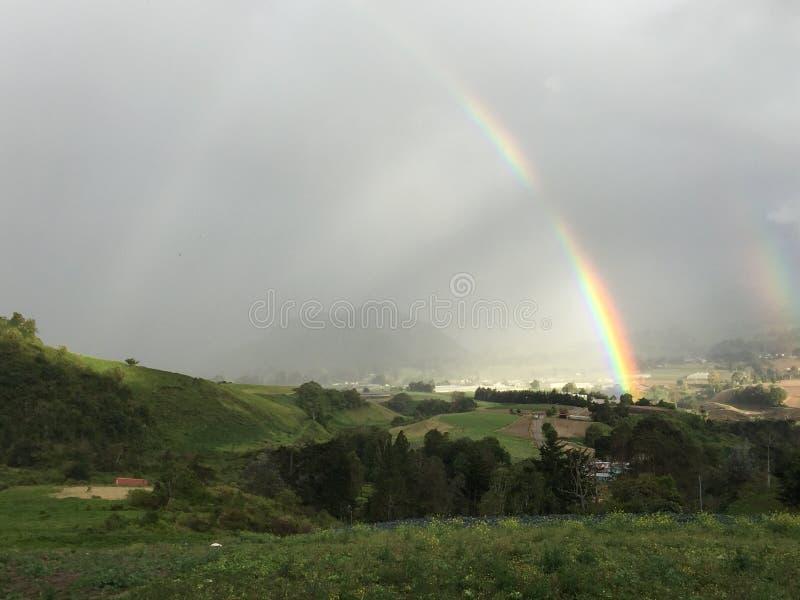 regnbågar fotografering för bildbyråer
