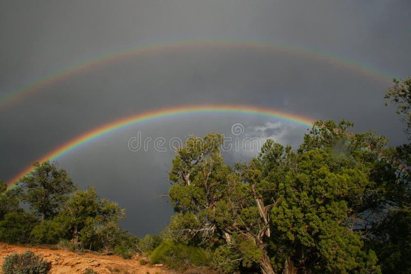 regnbågar arkivfoton