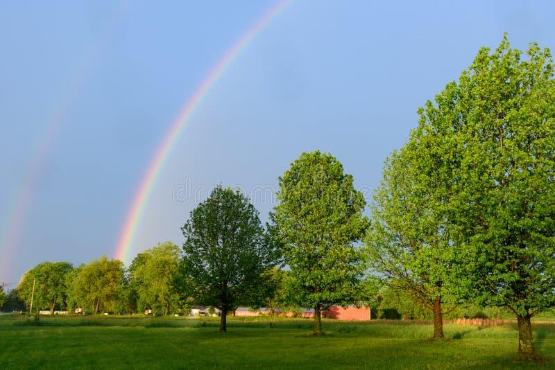 Regnbåge över en linje av träd royaltyfri bild