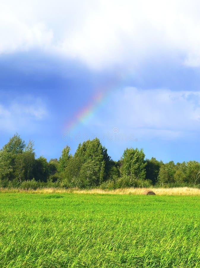 Regnbåge över grönt gräs Solen och blått skidar Solsken efter regn royaltyfria bilder