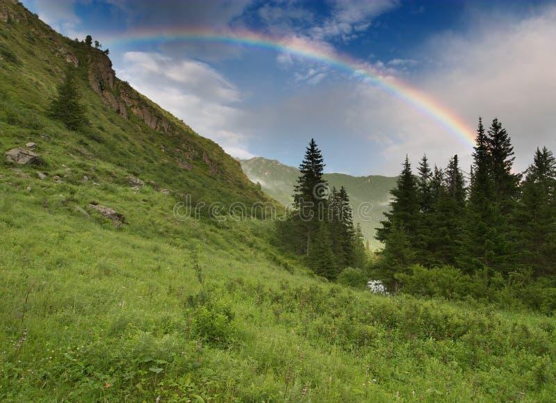 Download Regnbåge fotografering för bildbyråer. Bild av glänta, gräs - 500997