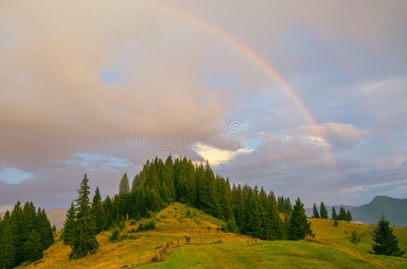 Regnbåge i bergdalen efter regn härlig carpathians liggande ukraine arkivfoto
