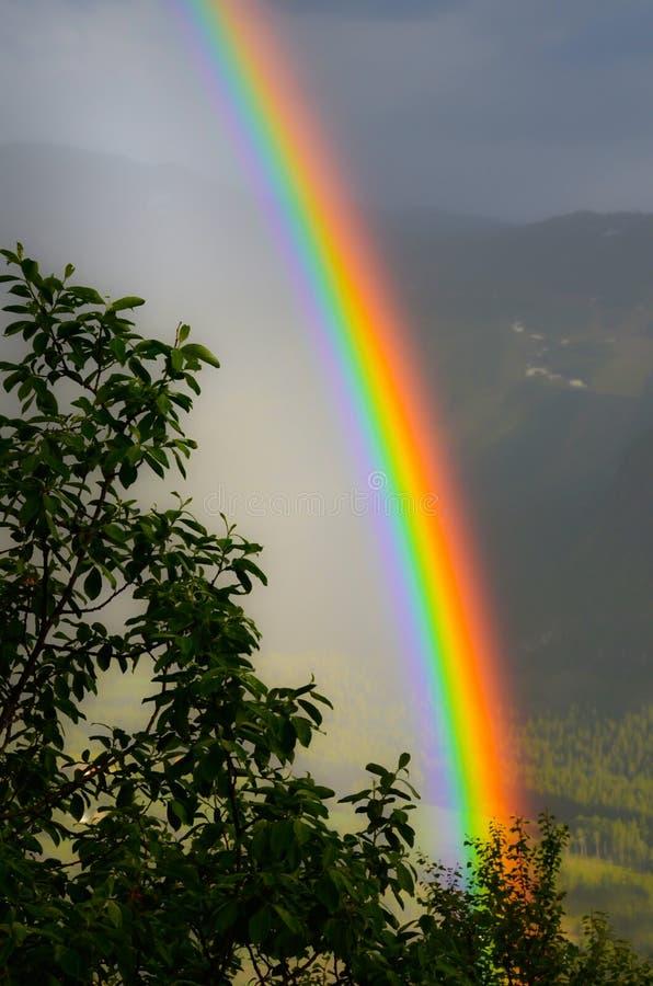 Regnbåge i dalen royaltyfri fotografi