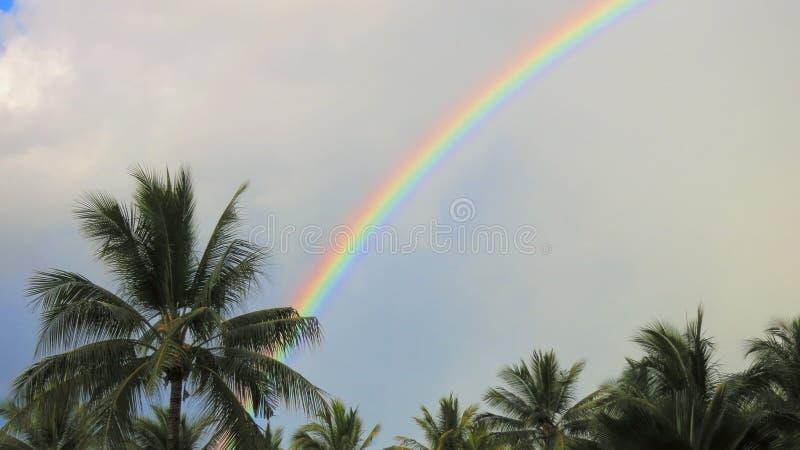 Regnbåge i Hamilton Island arkivfoto
