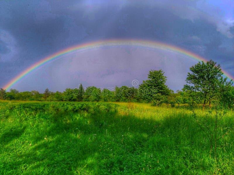 Regnbåge i sommar arkivbild